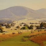 afternoon-light-weddin-mountains-glenfell-nsw
