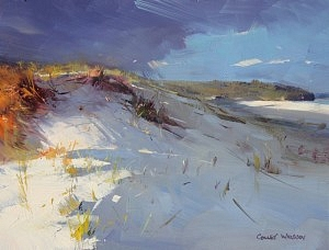 whisson Sussex Inlet Dunes  09''x 12''